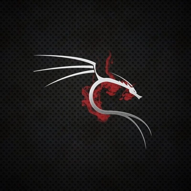 10 Latest Kali Linux Hd Wallpaper FULL HD 1080p For PC Desktop 2018 free download 1 kali linux fonds decran hd arriere plans wallpaper abyss 800x800