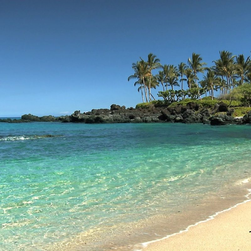 10 New Pics Of Hawaiian Beaches FULL HD 1920×1080 For PC Background 2018 free download 10 most beautiful beaches in hawaii youtube 800x800