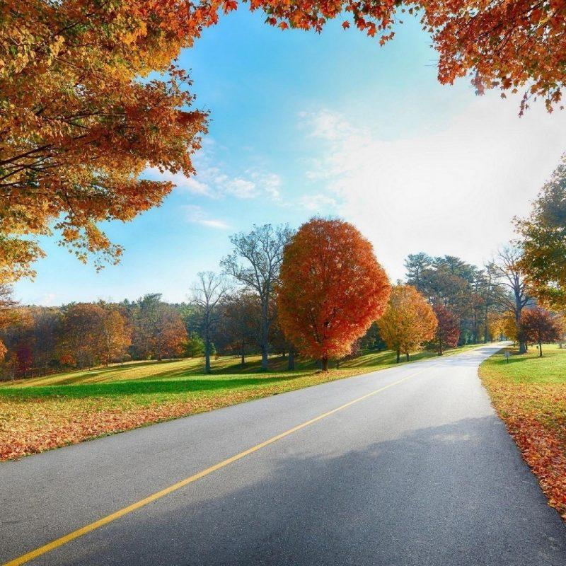 10 Latest Landscape Wallpaper Hd 1080P FULL HD 1920×1080 For PC Background 2020 free download 1080p hd image nature pixelstalk 1 800x800