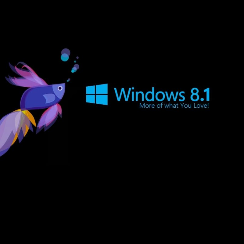 10 New Windows 8.1 Hd Wallpaper FULL HD 1920×1080 For PC Desktop 2020 free download 11 windows 8 1 hd wallpapers background images wallpaper abyss 800x800