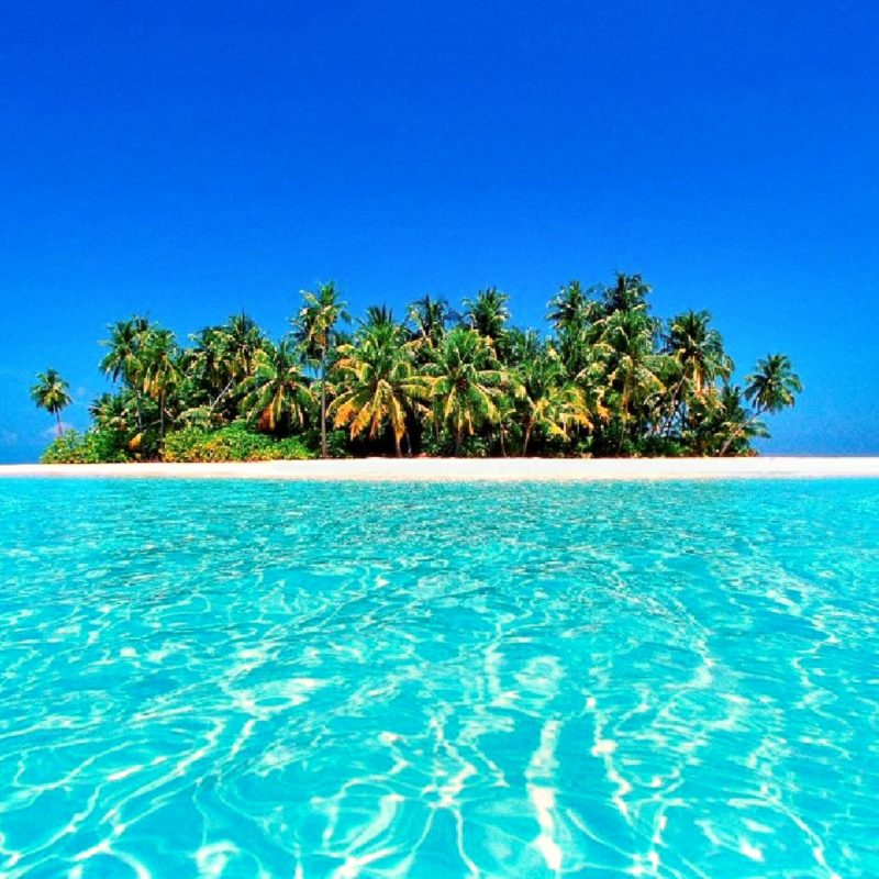 10 Most Popular Tropical Island Desktop Wallpaper FULL HD 1080p For PC Desktop 2018 free download 117 tropical island desktop backgrounds 800x800