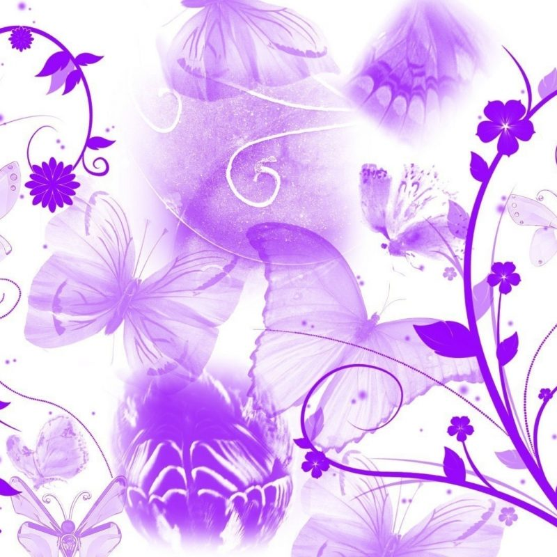 10 New Purple Butterfly Background Images FULL HD 1920×1080 For PC Desktop 2018 free download 1250 purple butterfly hd picture wallpaper walops 800x800