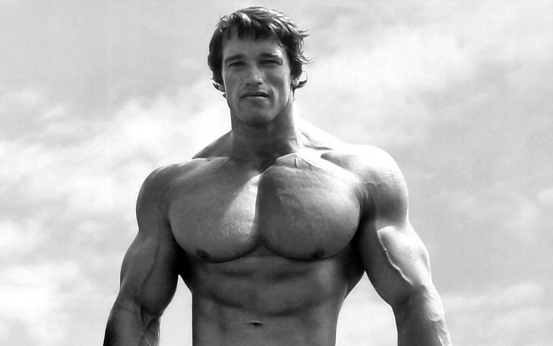 143 arnold schwarzenegger hd wallpapers | background images