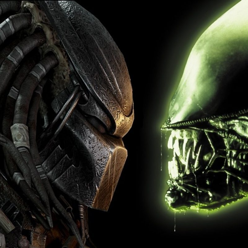 10 New Alien Vs Predator Wallpaper FULL HD 1080p For PC Background 2018 free download 1920 x 1080p alien vs predator wallpaperxcompactvenom on deviantart 800x800