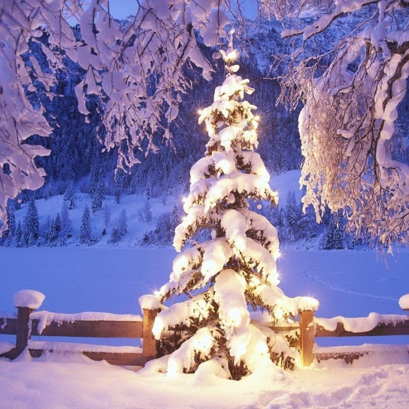 10 Most Popular Christmas Wallpaper 1920X1080 Hd FULL HD 1920×1080 For PC Desktop 2021 free download 1920x1080 christmas wallpapers hd download 800x800