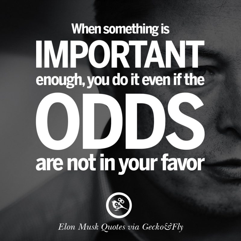 10 Top Elon Musk Quotes Wallpaper FULL HD 1080p For PC Desktop 2020 free download 20 elon musk quotes on business risk and the future 800x800
