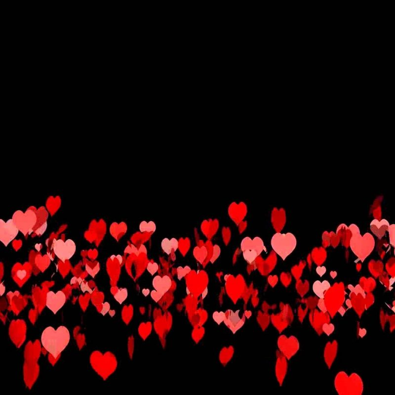 10 Best Heart With Black Background FULL HD 1920×1080 For PC Background 2020 free download 2000 hearts black background youtube 800x800