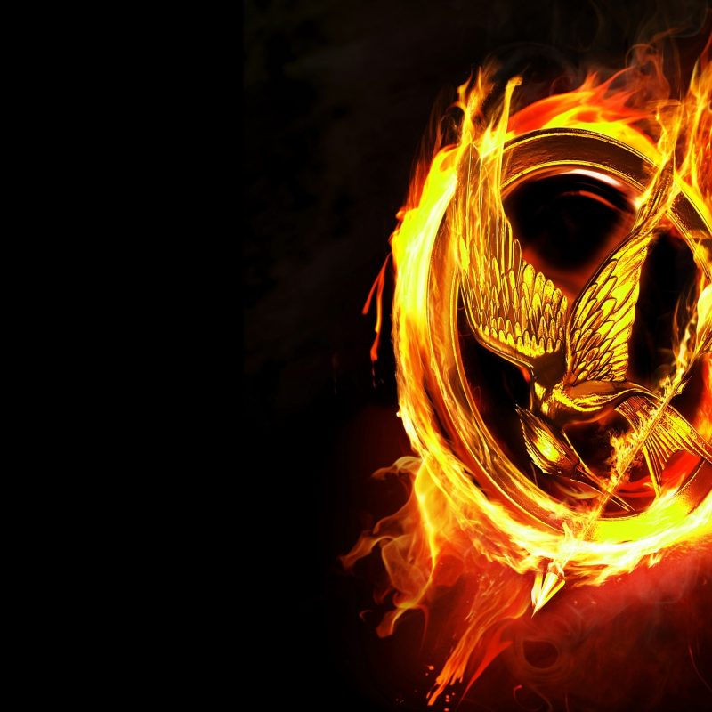 10 Most Popular The Hunger Games Wallpaper FULL HD 1080p For PC Desktop 2018 free download 2012 the hunger games e29da4 4k hd desktop wallpaper for 4k ultra hd tv 800x800