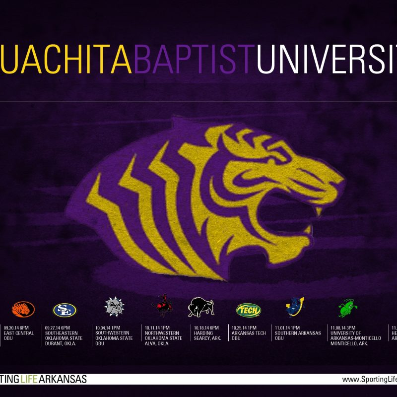 10 Top Lsu Football Schedule 2015 Wallpaper FULL HD 1080p For PC Desktop 2020 free download 2014 ouachita baptist tigers football schedule wallpaper 800x800