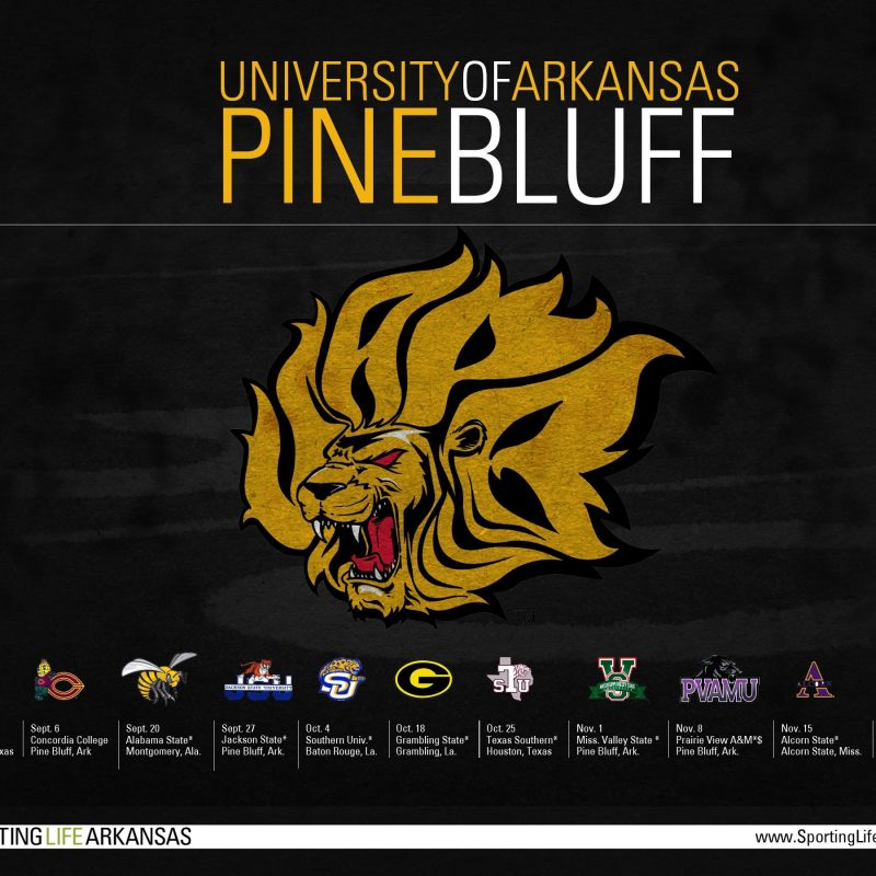10 Top Lsu Football Schedule 2015 Wallpaper FULL HD 1080p For PC Desktop 2020 free download 2014 uapb golden lions football schedule wallpaper 800x800
