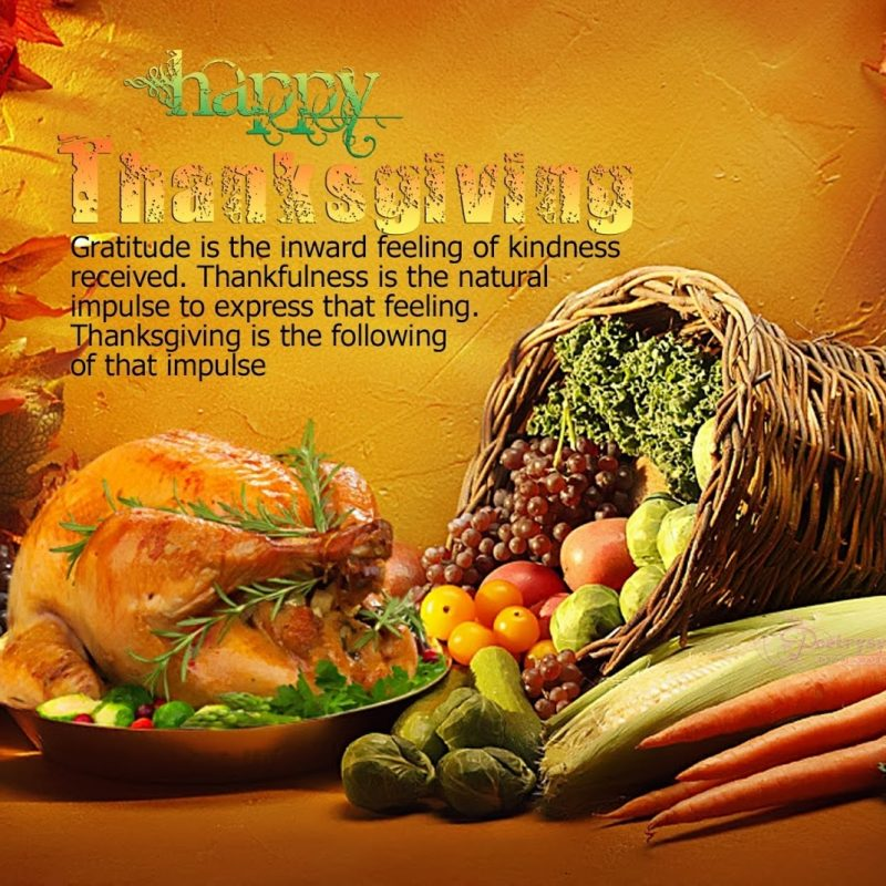 10 Latest Free Happy Thanksgiving Wallpaper FULL HD 1080p For PC Background 2021 free download 2016 happy thanksgiving imagespictures clip arts wallpapers 800x800