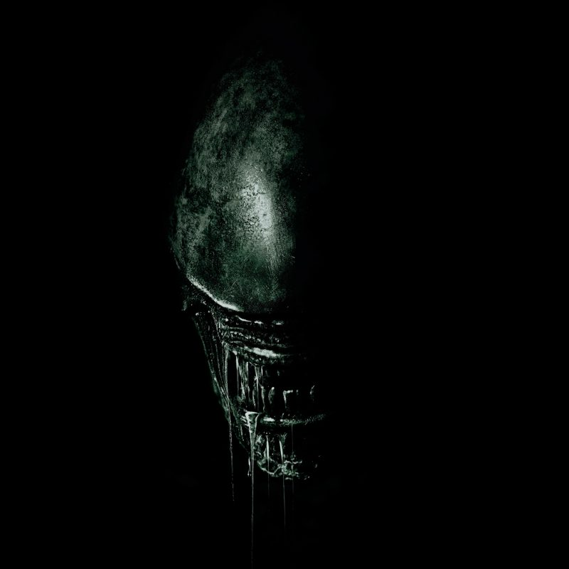 10 New Alien Covenant Hd Wallpaper FULL HD 1920×1080 For PC Background 2020 free download 2017 alien covenant 4k wallpapers hd wallpapers id 19845 800x800