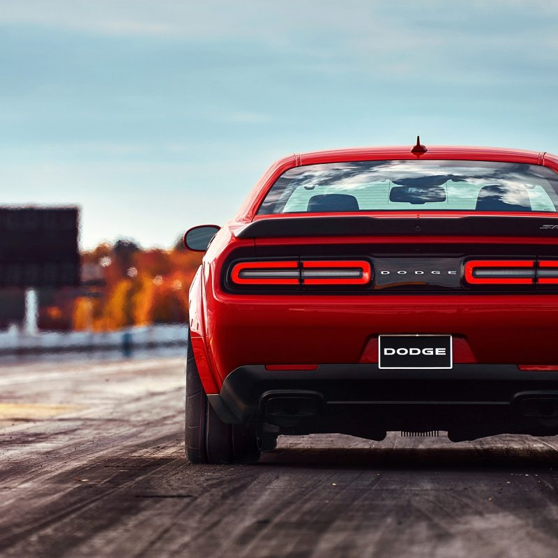 10 New Dodge Challenger Hd Wallpaper FULL HD 1080p For PC Desktop 2020 free download 2018 dodge challenger srt demon rear hd wallpaper 36 800x800