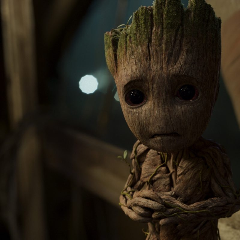 10 Latest Baby Groot Hd Wallpaper FULL HD 1080p For PC Background 2018 free download 2048x1152 baby groot in guardians of the galaxy vol 2 2048x1152 800x800