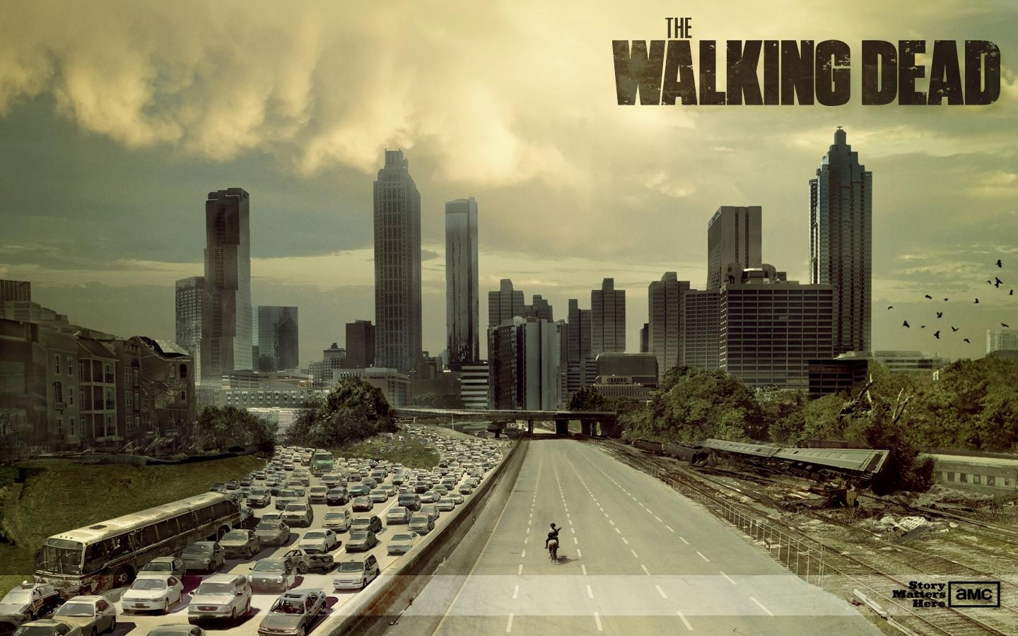205 the walking dead fonds d'écran hd | arrière-plans - wallpaper abyss