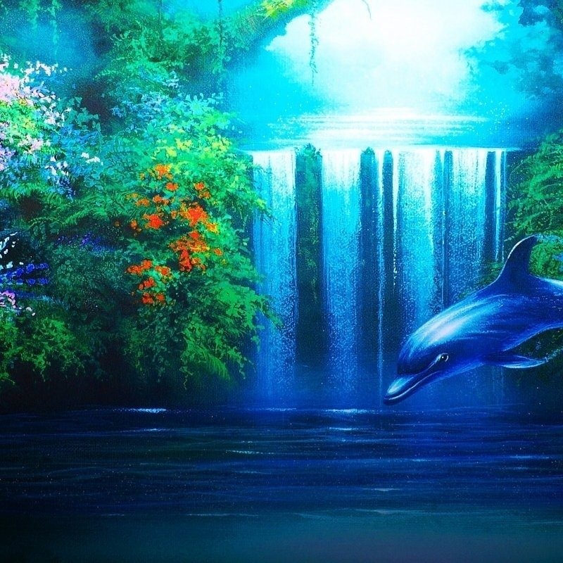 10 Best Dolphins Wallpaper Free Download FULL HD 1920×1080 For PC Background 2021 free download 208 dolphin hd wallpapers background images wallpaper abyss 800x800