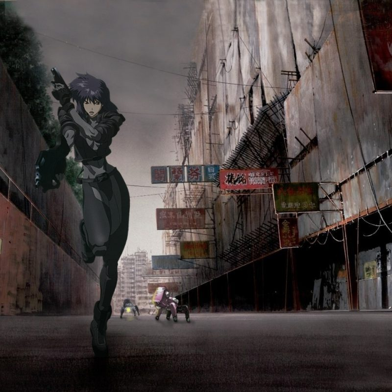 10 Most Popular Ghost In The Shell 1995 Wallpaper FULL HD 1080p For PC Background 2020 free download 209 ghost in the shell hd wallpapers background images wallpaper 800x800