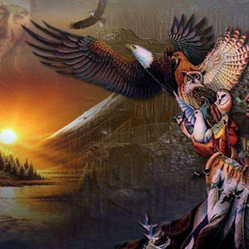 10 Best Native American Indian Wallpaper FULL HD 1920×1080 For PC Desktop 2018 free download 2095 native american indian wallpaper 800x800