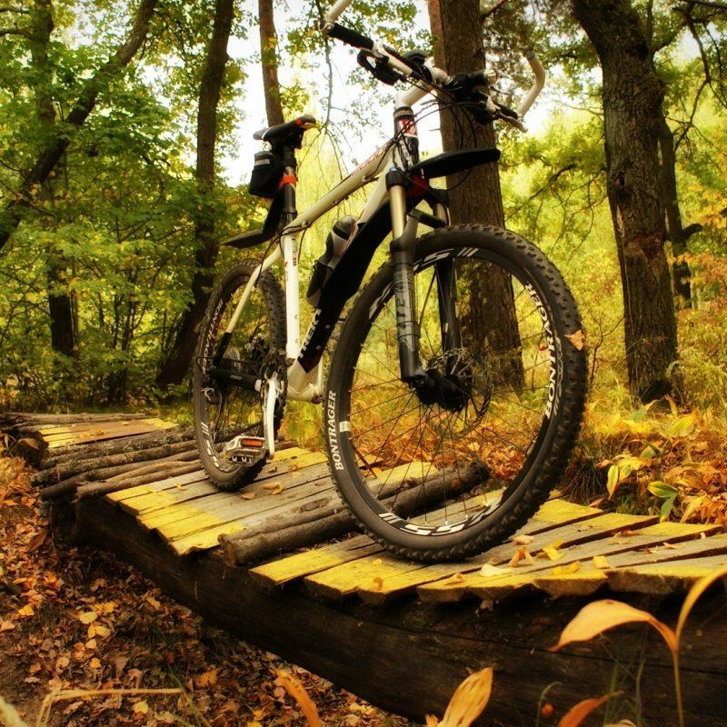 10 Best Mountain Bike Desktop Wallpaper FULL HD 1920×1080 For PC Background 2018 free download 21 bikes desktop wallpapers e28794 857078 mountain bike photos 800x800