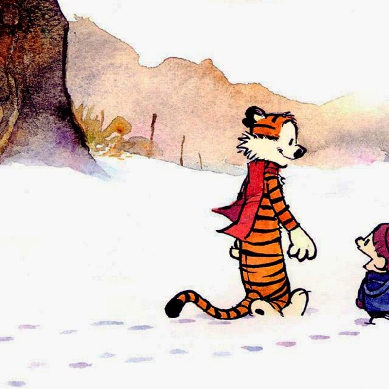 10 Best Calvin And Hobbes Desktop FULL HD 1080p For PC Desktop 2020 free download 224 calvin hobbes hd wallpapers background images wallpaper abyss 800x800