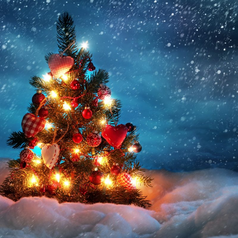 10 New Christmas Lights Snow Wallpaper FULL HD 1080p For PC Desktop 2021 free download 225 christmas lights hd wallpapers background images wallpaper abyss 2 800x800
