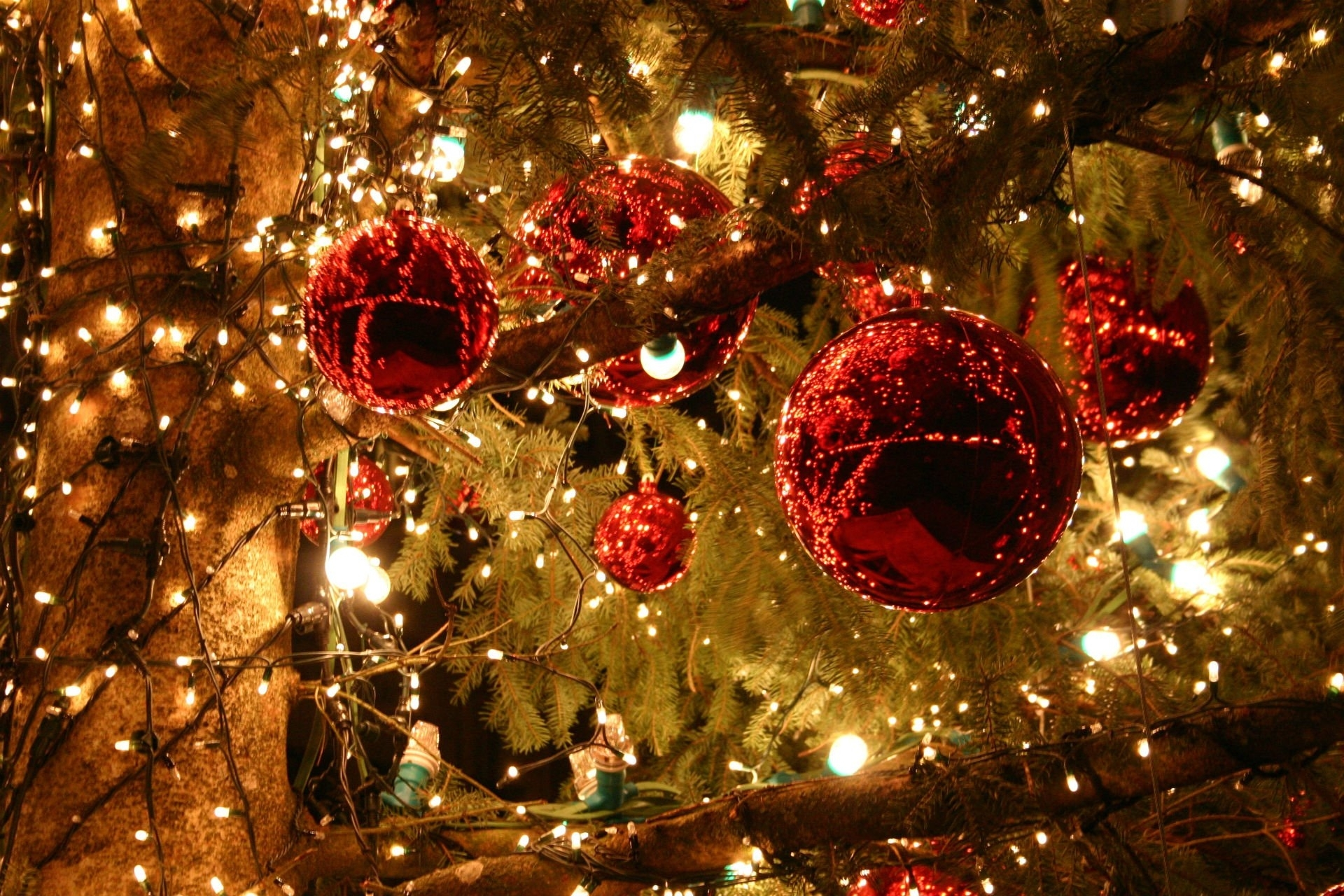225 christmas lights hd wallpapers | background images - wallpaper abyss