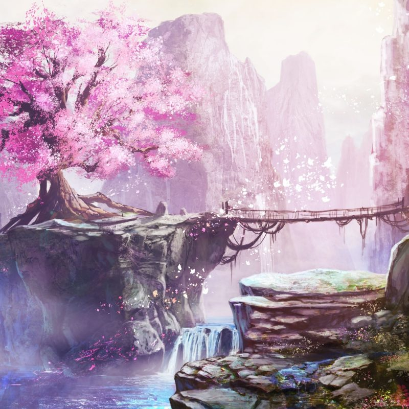 10 Most Popular Cherry Blossom Tree Anime Wallpaper FULL HD 1080p For PC Desktop 2018 free download 233 cherry blossom hd wallpapers background images wallpaper abyss 4 800x800