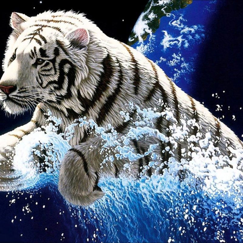 10 New White Tiger Wallpaper 3D FULL HD 1920×1080 For PC Desktop 2020 free download 234 white tiger hd wallpapers background images wallpaper abyss 800x800