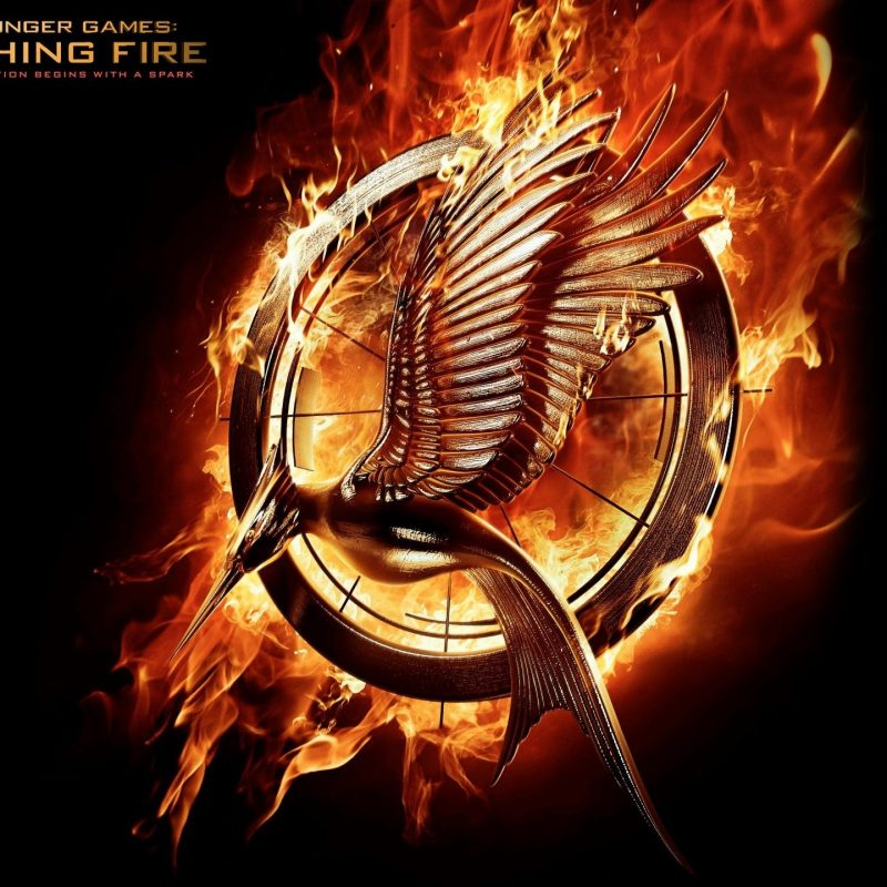 10 Most Popular The Hunger Games Wallpaper FULL HD 1080p For PC Desktop 2020 free download 245 the hunger games hd wallpapers background images wallpaper abyss 1 800x800