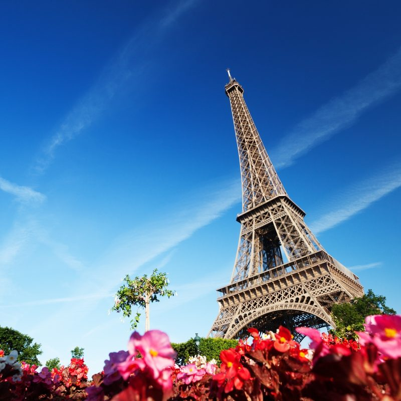 10 New Eiffel Tower Wallpaper Hd FULL HD 1920×1080 For PC Background 2021 free download 248 eiffel tower hd wallpapers background images wallpaper abyss 2 800x800