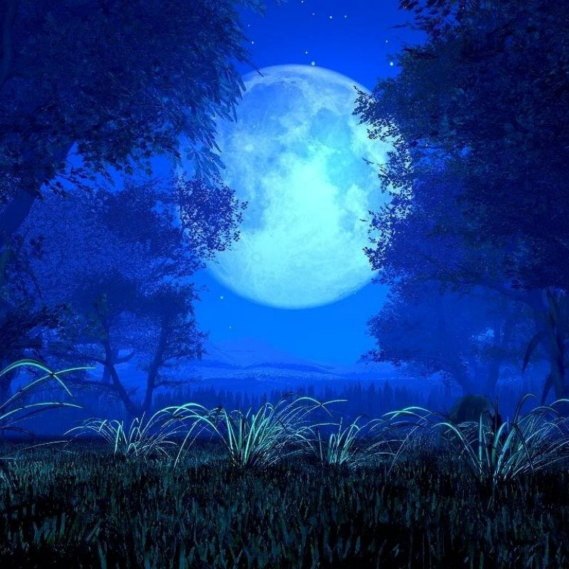 10 Best Anime Blue Moon Wallpaper FULL HD 1080p For PC Background 2020 free download 25 impressive collection of blue backgrounds photography 800x800