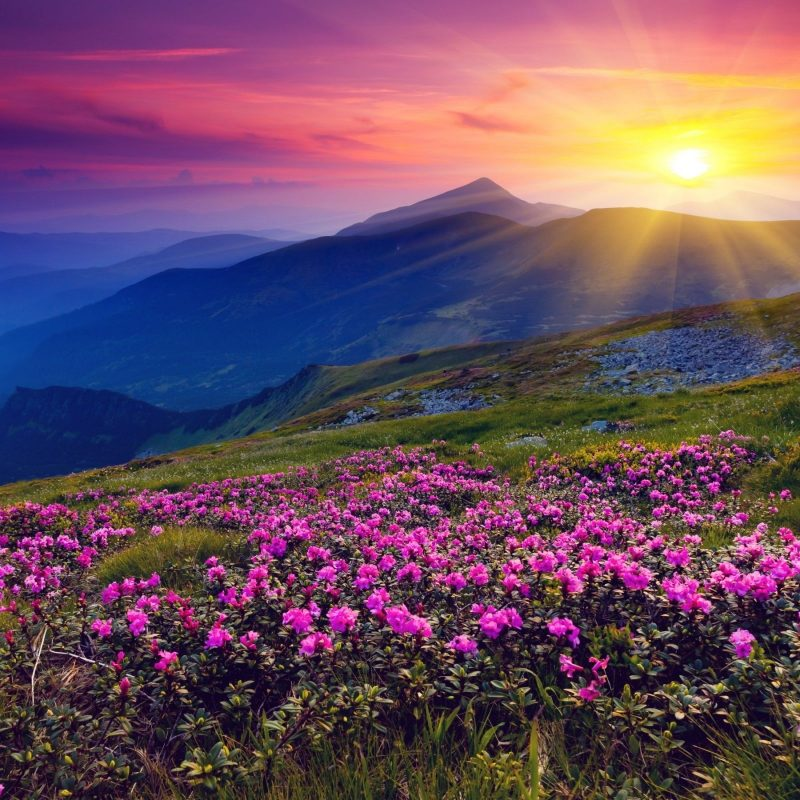 10 New Beautiful Sunset Mountain Wallpapers FULL HD 1920×1080 For PC Background 2021 free download 2560x1600 mountains azalea sunset wallpaper mountains pinterest 800x800