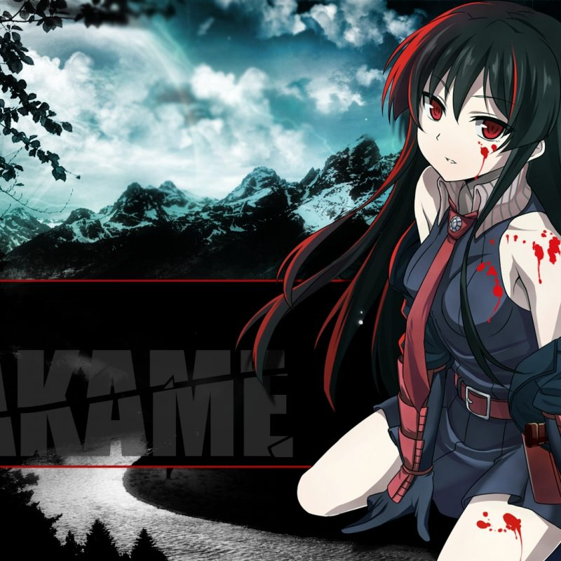 10 New Akame Ga Kill Wallpaper Hd FULL HD 1080p For PC Desktop 2018 free download 259 akame ga kill hd wallpapers background images wallpaper abyss 800x800