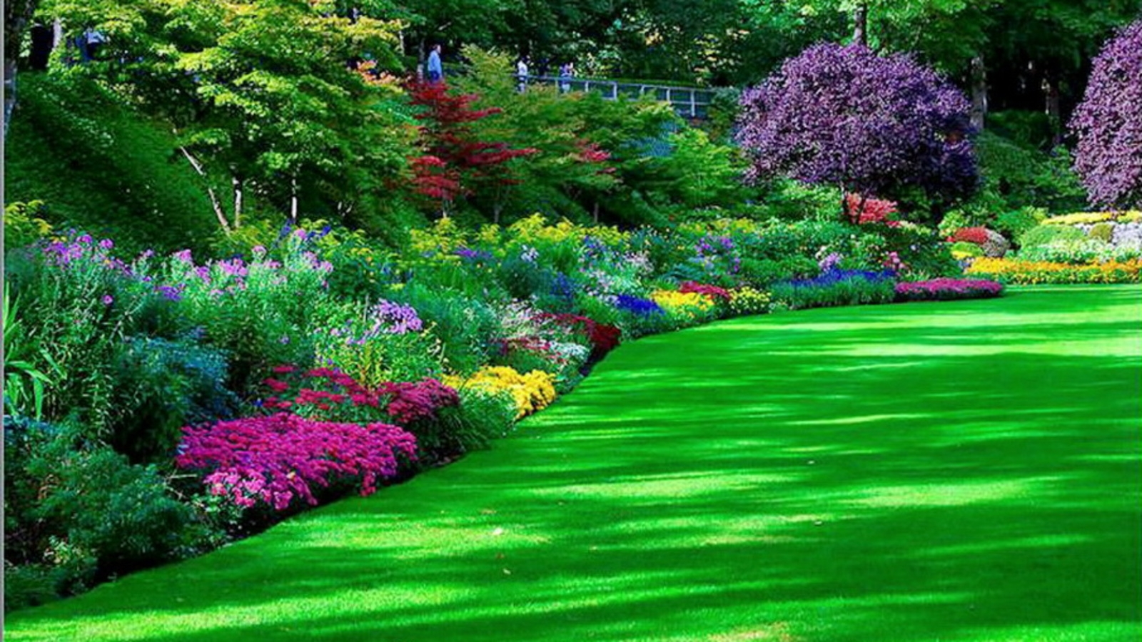 263 garden hd wallpapers | background images - wallpaper abyss