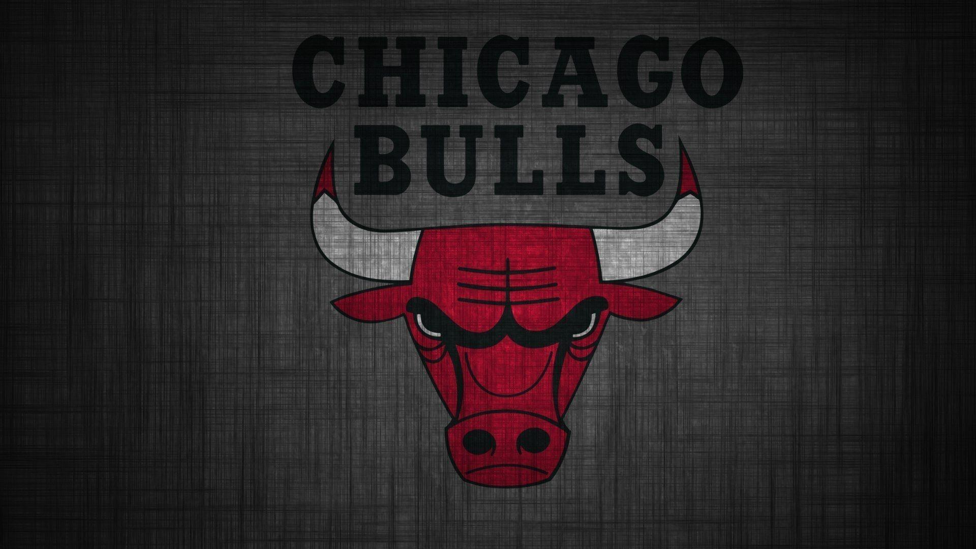 2764 chicago bulls wallpaper logo