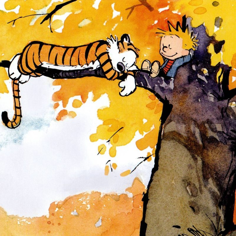 10 Most Popular Calvin And Hobbes Background FULL HD 1920×1080 For PC Background 2018 free download 28 hi def calvin and hobbes wallpapers 1 800x800