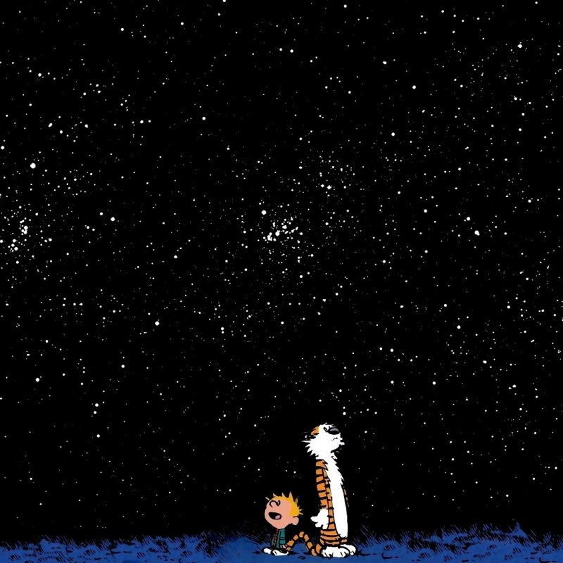 10 Most Popular Calvin And Hobbes Background FULL HD 1920×1080 For PC Background 2020 free download 28 hi def calvin and hobbes wallpapers 800x800