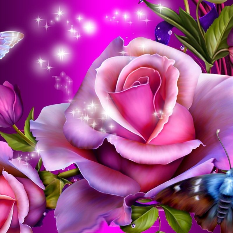 10 Top Pink And Purple Roses Wallpaper FULL HD 1920×1080 For PC Background 2020 free download 2820 butterflies and roses wallpaper 800x800