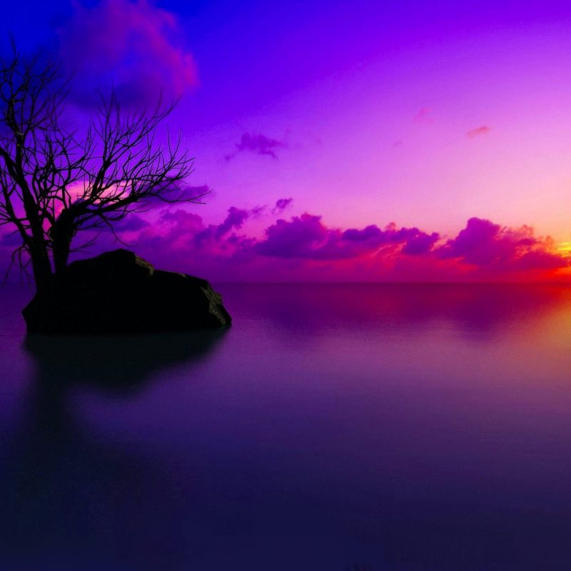 10 New Sunset Background 1920X1080 FULL HD 1080p For PC Background 2021 free download 2947 sunset hd wallpapers background images wallpaper abyss 800x800