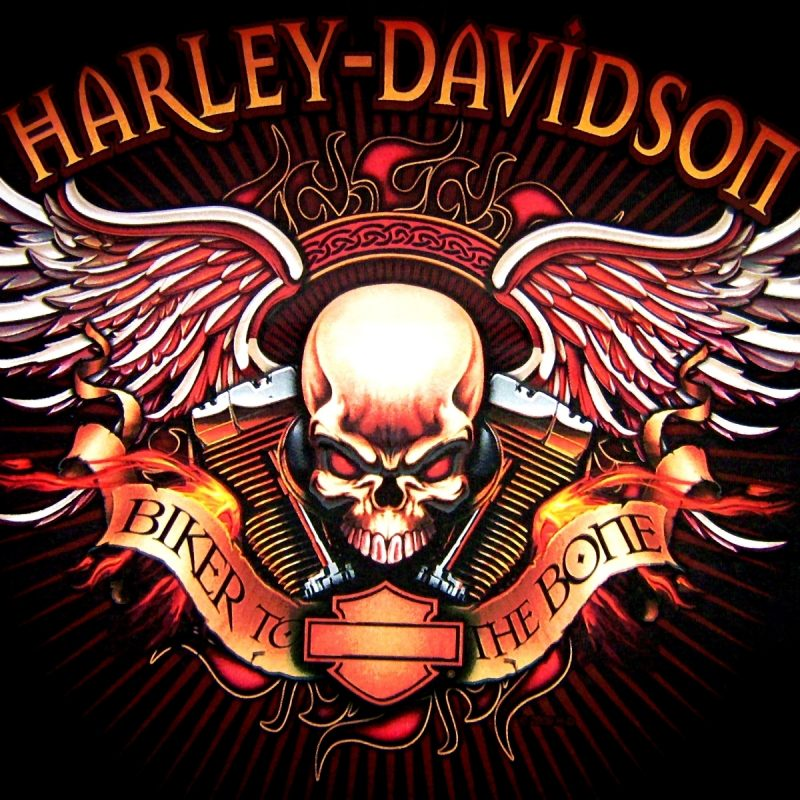 10 Top Harley Davidson Logo Wallpaper FULL HD 1080p For PC Desktop 2018 free download 299 harley davidson fonds decran hd arriere plans wallpaper abyss 800x800
