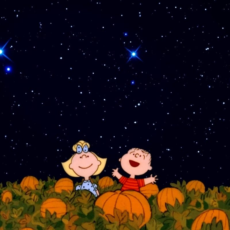 10 New Great Pumpkin Charlie Brown Pictures FULL HD 1920×1080 For PC Background 2021 free download 30 days of halloween halloween day its the great pumpkin 800x800