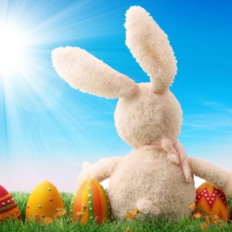 10 Most Popular Easter Bunny Wallpaper Backgrounds FULL HD 1920×1080 For PC Background 2018 free download 30 easter bunny wallpapers backgrounds images freecreatives 800x800