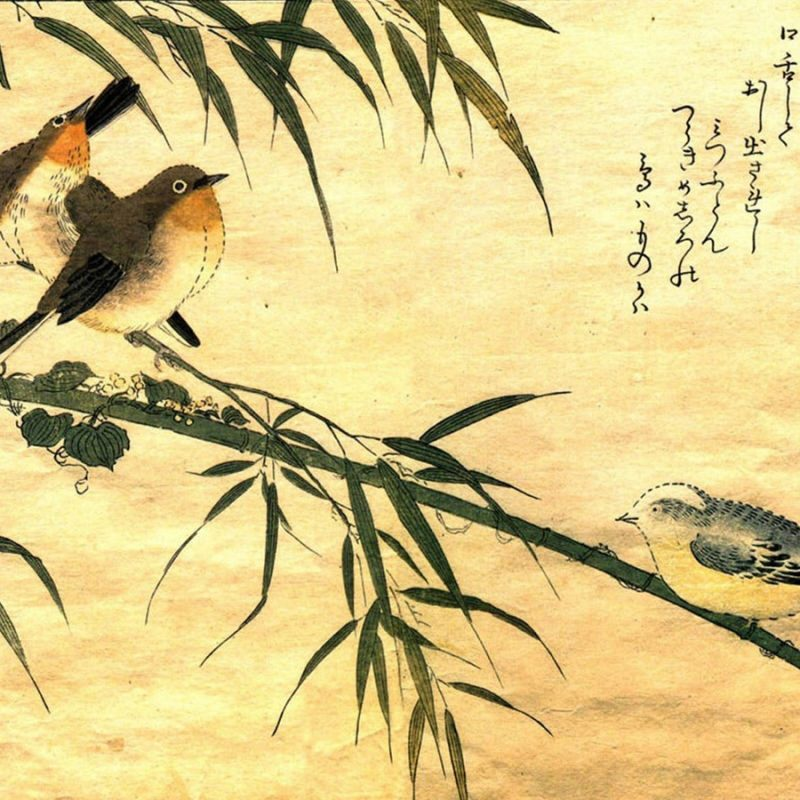 10 Most Popular Japanese Art Wallpaper Hd FULL HD 1080p For PC Desktop 2018 free download 30 japanese art wallpapers japanese art 100 quality hd 800x800