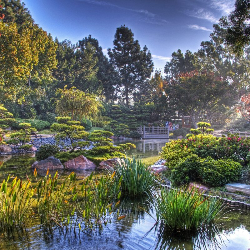 10 Latest Hd Japanese Garden Wallpaper FULL HD 1080p For PC Background 2020 free download 30 japanese garden hd wallpapers background images wallpaper abyss 1 800x800