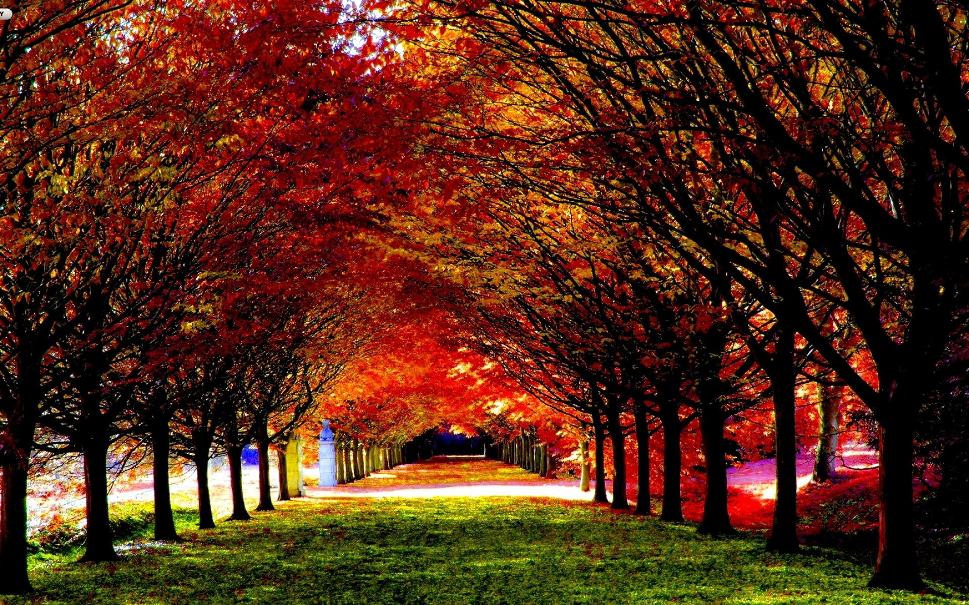 30 most beautiful autumn wallpapers hd - mixhd wallpapers | roads