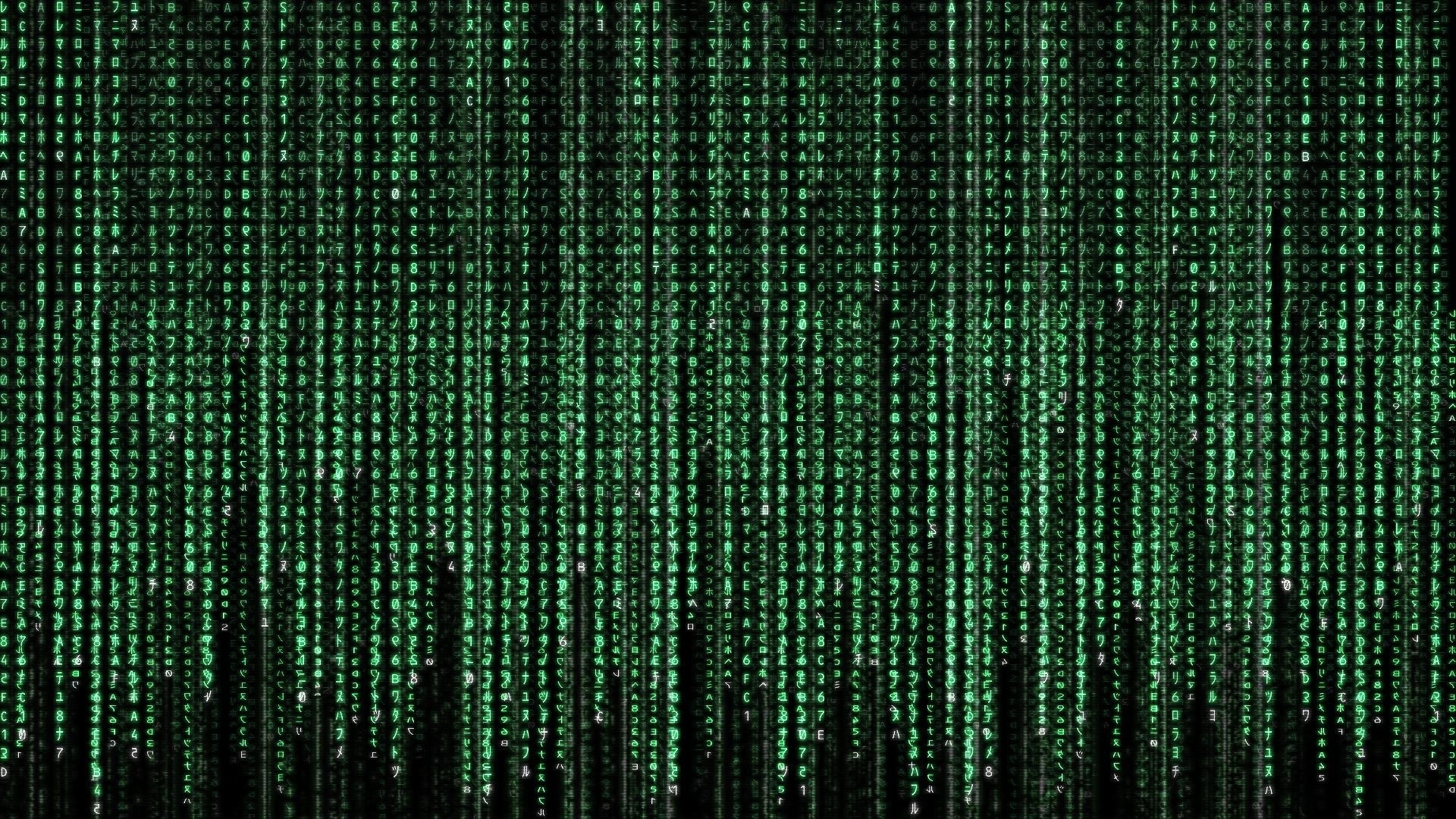30 the matrix hd wallpapers | background images - wallpaper abyss