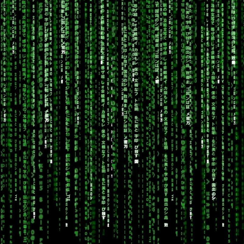 10 Top The Matrix Desktop Wallpaper FULL HD 1920×1080 For PC Background 2018 free download 31 the matrix hd wallpapers background images wallpaper abyss 1 800x800