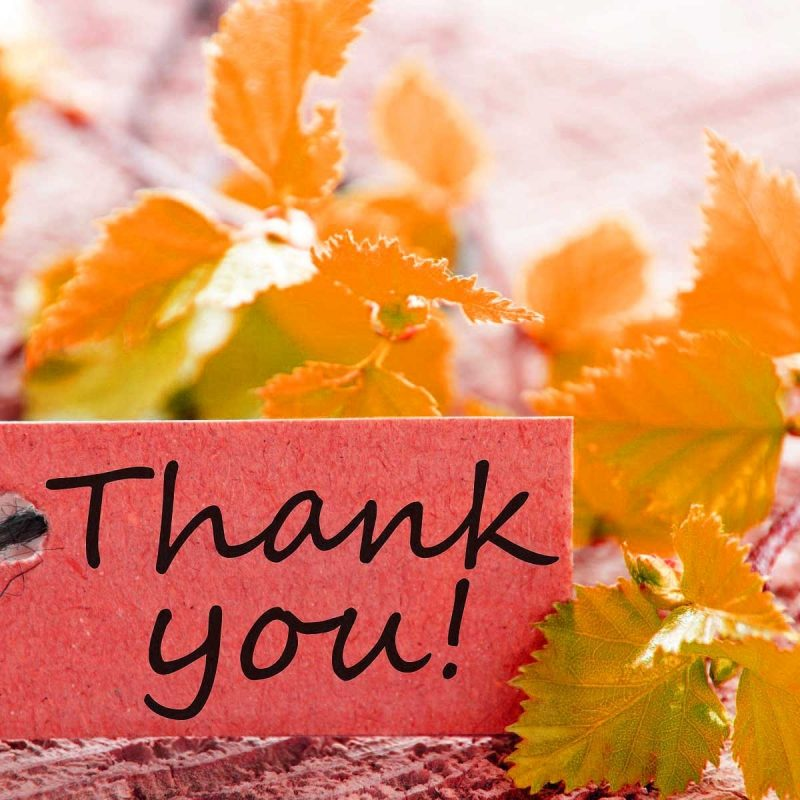 10 Best Thank You Wallpaper Hd FULL HD 1920×1080 For PC Desktop 2021 free download 316 images for thank you pictures photos pics greeting post card 800x800
