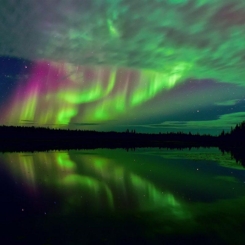 10 Top Hd Aurora Borealis Wallpaper FULL HD 1080p For PC Background 2020 free download 318 aurora borealis hd wallpapers background images wallpaper abyss 3 800x800