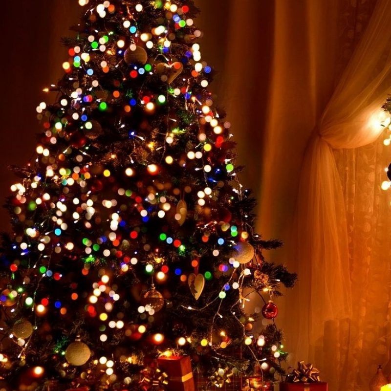 10 Best Christmas Tree Phone Wallpaper FULL HD 1080p For PC Background 2021 free download 32 striking christmas iphone wallpaper home screen n lock screen 800x800
